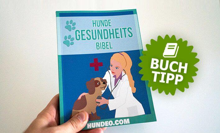 Die Gesundheits Bibel für Hundebesitzer